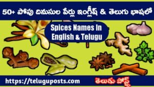 Spices Names In English And Telugu