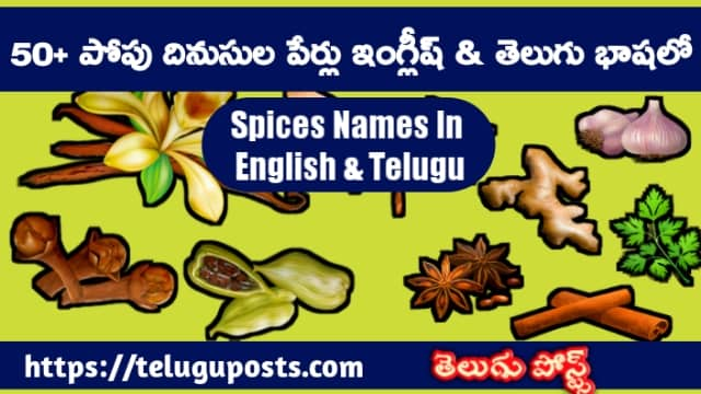 Spices Names In Telugu And English Languages