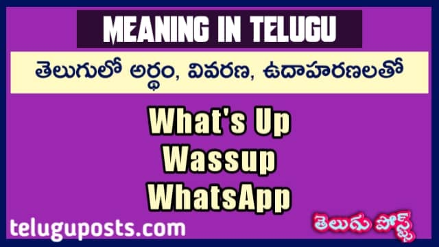 What's up Meaning In Telugu Language, wassup, whatsapp